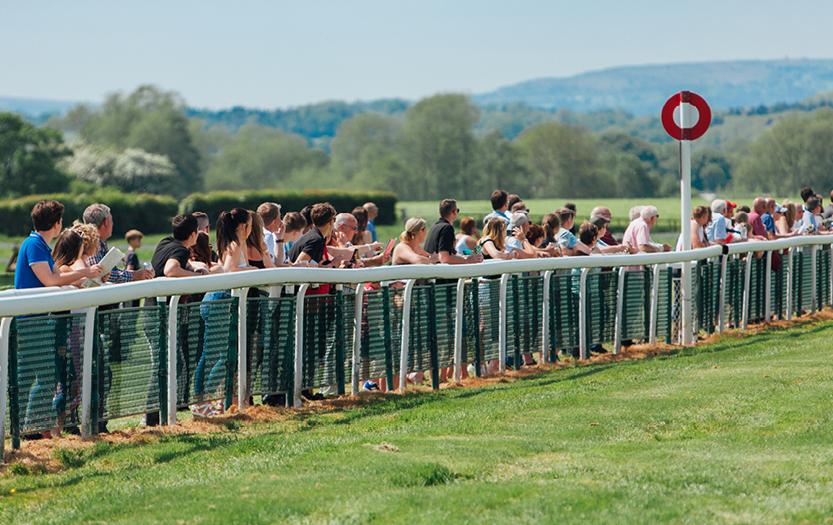 Update on Spectators Attending Race Meetings thumbnail image