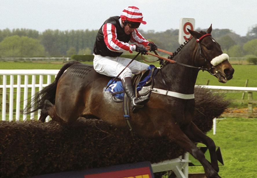 National Racehorse Week: Bangor's Grand National Winners thumbnail image